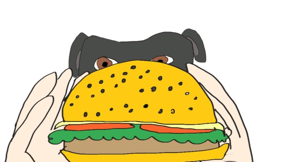 hamburger3